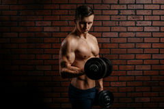 Young sports guy trains the biceps. In the gym Stock Image