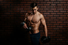 Young sports guy trains the biceps Royalty Free Stock Photos