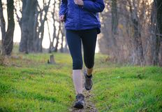 Young Sports Woman Running on the Forest Trail in the Morning Royalty Free Stock Photos