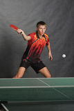 Young sportsman. Playing table tennis royalty free stock photos