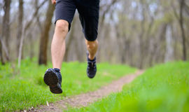 Young Sportsman Running on the Spring Forest Trail in Morning. Legs Close up View Royalty Free Stock Image