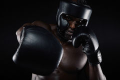 Young sportsman training boxing Royalty Free Stock Images