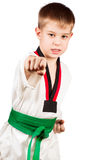 Young sportsman training karate. Royalty Free Stock Photo