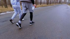 Young sportspeople walk along the road in the forest and recreates after jogging. Young sportspeople walks along the road in the forest and recreates after stock video