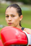 Young sporty active woman boxing outdoor Stock Photos