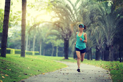 Young sporty asian woman running at tropical park. Healthy lifestyle young sporty asian woman running at tropical park Royalty Free Stock Photo