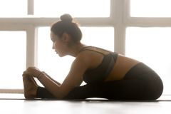 Young sporty attractive woman practicing yoga, Seated forward be stock photography