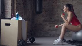 Attractive girl doing exercise with red dumbbells on the background of a brick wall. Young sporty girl doing exercise with dumbbells on the background of a brick stock video footage
