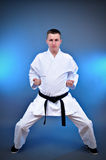 Young sporty karate man royalty free stock image
