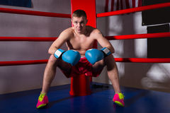 Young sporty male boxer with bare chest in boxing gloves sitting royalty free stock photography