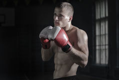 Young sporty man. Young athletic man with boxing gloves and a rack Stock Photos