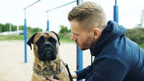 Young sporty man hug and play his bullmastiff dog outdoor at nature. Young sporty man hug and play his bullmastiff dog outdoor at park stock images