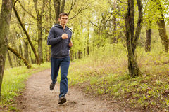 Young sporty man jogging in the morning forest Royalty Free Stock Photo