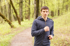 Young sporty man jogging in the morning forest Royalty Free Stock Image
