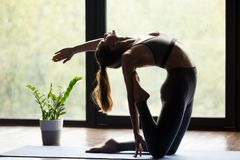 Young sporty woman doing Ustrasana backbend exercise. Young sporty woman practicing yoga, doing Ustrasana exercise, Camel pose, working out, wearing sportswear stock image