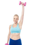 Young sporty woman holding dumbbells Royalty Free Stock Image
