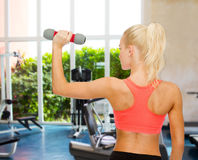 Young sporty woman with light dumbbell Royalty Free Stock Images