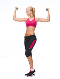 Young sporty woman with light dumbbells royalty free stock image