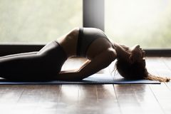 Young sporty woman doing Matsyasana exercise, close up. Young sporty woman practicing yoga, doing Matsyasana exercise, Fish pose, working out, wearing sportswear stock image