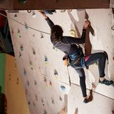 Young sporty woman reaching the top of artificial bouldering wall while exercising in bouldering gym indoors. Motivation healthy life sportsman climber female Stock Photos