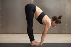 Young sporty woman standing in Uttanasana pose, grey studio back Royalty Free Stock Photography