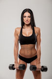 Young sporty woman training with the dumbbell Royalty Free Stock Photos