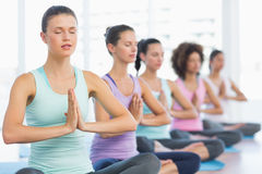Young sporty women with joined hands sitting in row Stock Photos