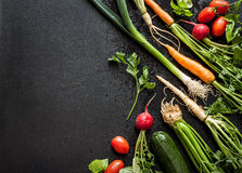 Young spring vegetables on black chalkboard from above Stock Images
