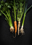 Young spring vegetables chalkboard - carrot, leek, celeriac, parsley on black Royalty Free Stock Photo