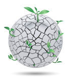 Young sprout from cracked sphere Royalty Free Stock Image