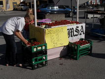 Young strawberry sellers in Gotland Royalty Free Stock Image