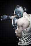 Young strong boxer Stock Images