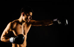 Young strong boxer with black gloves Stock Photos
