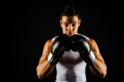 Young strong boxer with black gloves royalty free stock photos