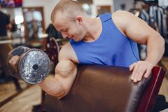 Man in a gym royalty free stock photography