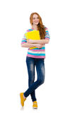 Young student with books Royalty Free Stock Image