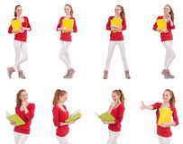 The young student with books on white. Young student with books on white Stock Image