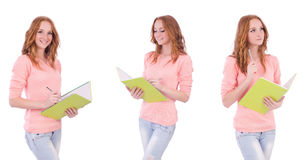 The young student with notebooks isolated on white Stock Image