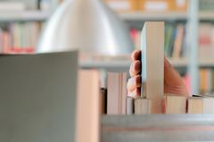 Young student picking a book from the shelf in the library. Preparing for exams, young man searching for or choosing a book in the. Public library in university royalty free stock images