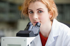A young student posing with a microscope Stock Photography