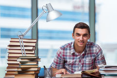 The young student preparing for college exams Royalty Free Stock Photos