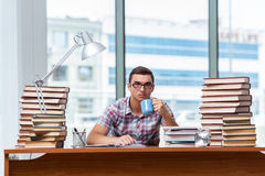 The young student preparing for college exams Royalty Free Stock Images