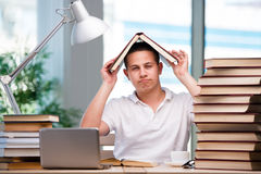 The young student preparing for school exams. Young student preparing for school exams Stock Photos