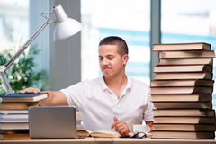 The young student preparing for school exams. Young student preparing for school exams Royalty Free Stock Photos