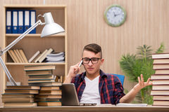 The young student preparing for school exams Royalty Free Stock Photo