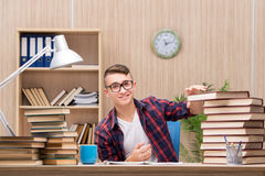 The young student preparing for school exams Royalty Free Stock Photos