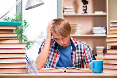 The young student preparing for university exams Royalty Free Stock Photo