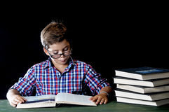 Young student reading a book Stock Photography