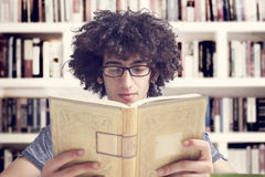 Young student reading  book in library. Portrait of young student reading  book in library Royalty Free Stock Image