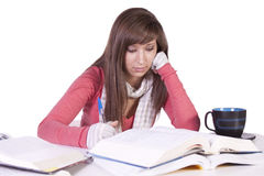 Young student studying for exams Royalty Free Stock Photo